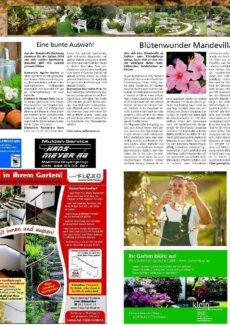 Presseartikel: Eine bunte Auswahl Blütenwunder Mandevilla (Aarauer Nachrichten | Mai 2014)