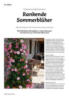 Presseartikel: Rankende Sommerblüher (Schweizer Garten | April 2017)