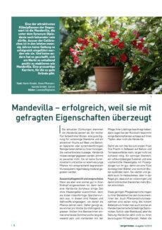 Presseartikel: Mandevilla (Der Gartenbau | April 2012 )