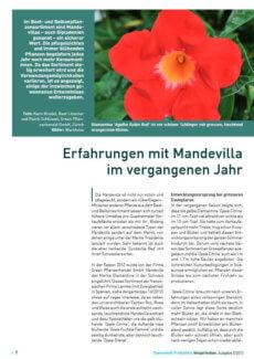 Presseartikel:  Erfahrungen mit Mandevilla im vergangenen Jahr (Der Gartenbau | Januar 2013 )