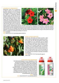 Presseartikel: Mandevilla: Unermüdliche Sommerblüher (Schweizer Garten | März 2013)