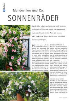 Presseartikel:  Mandevillen & Co: Sonnenräder (Schweizer Garten | April 2014 )